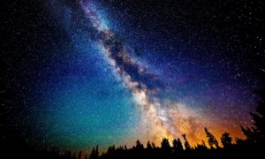 astrobotany header
