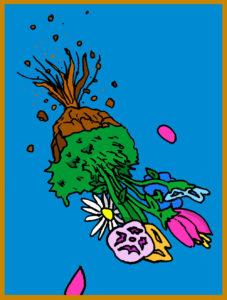 astrobotany flowers slowly falling