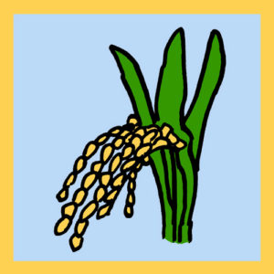 astrobotany rice